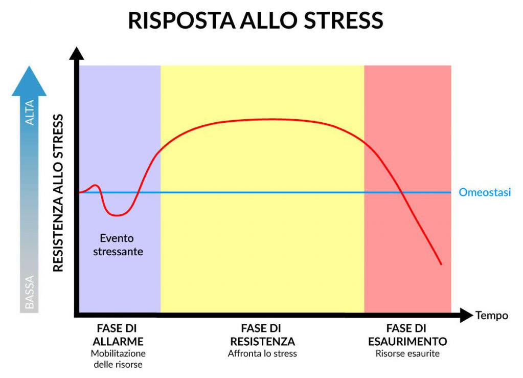 sindrome generale di adattamento allo stress Seyle