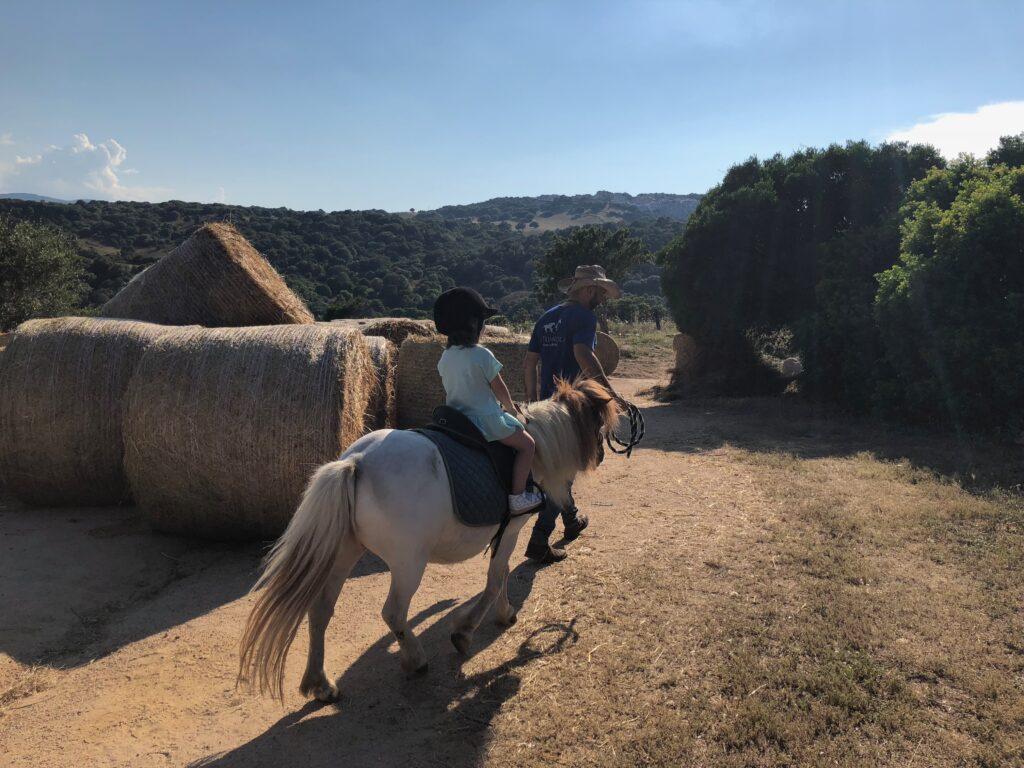 veduta della tenuta con pony