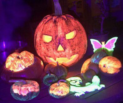 zucche fluorescenti e fosforescenti