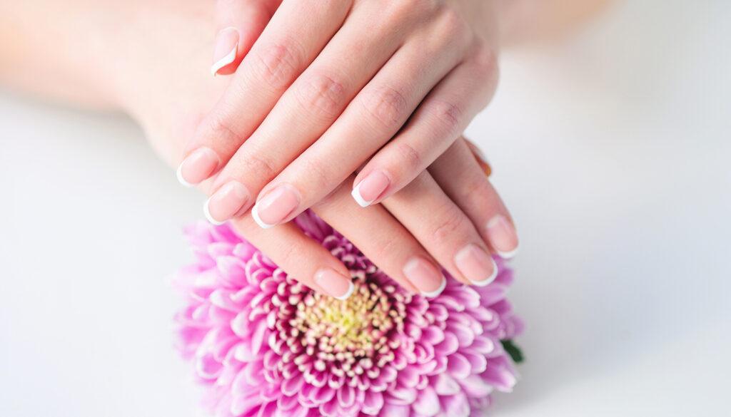 mani e fiore rosa