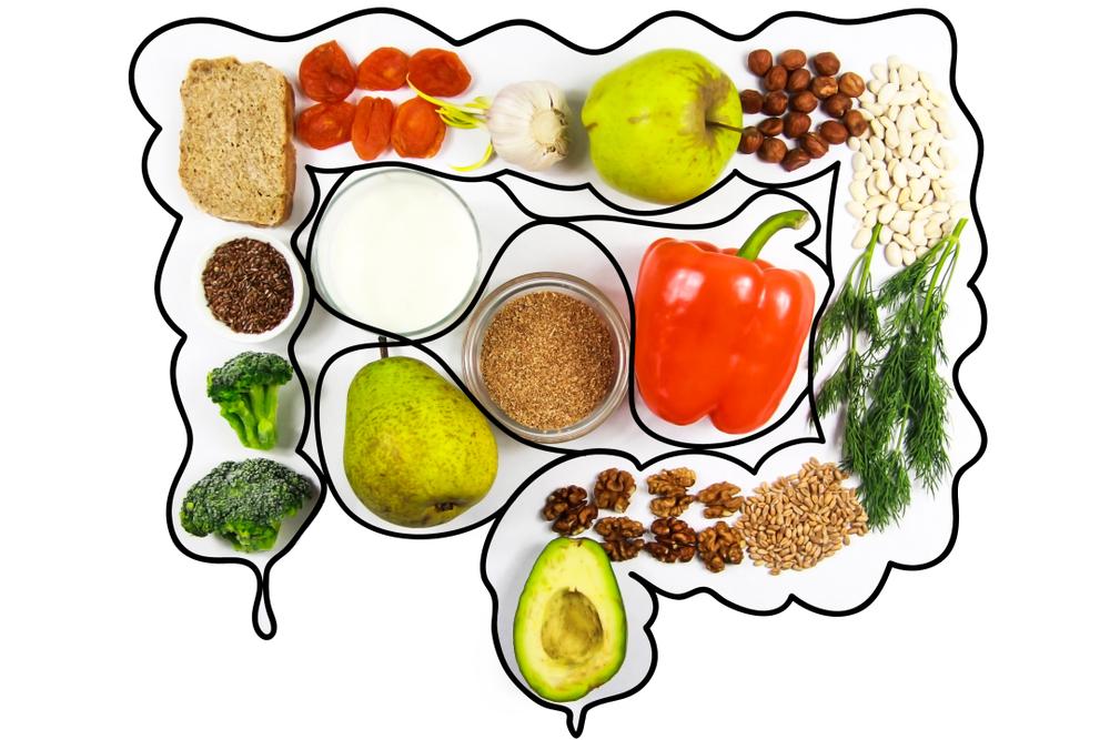 cibo per l'intestino
