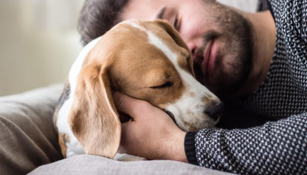 uomo dorme col cane